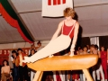 Kreisflankenwettbewerb 1984